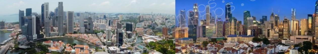 Singapore Commercial & Industrial Properties for Sale & Rent